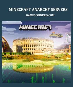 what is an anarchy server in minecraft